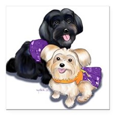 "Havanese and Morkie Couple Square Car Magnet 3"" x"