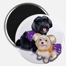 """Havanese and Morkie Couple 2.25"""" Magnet (10 pack)"""