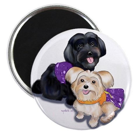 Havanese and Morkie Couple Magnet