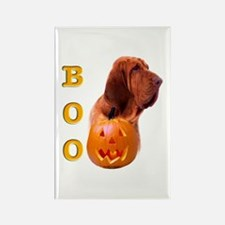 Halloween Bloodhound Boo Rectangle Magnet