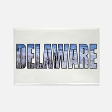 Cute Delaware state Rectangle Magnet