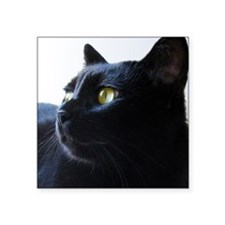 "Black Cat in Profile Square Sticker 3"" x 3&qu"