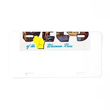 Dells Wisconsin Greetings Aluminum License Plate