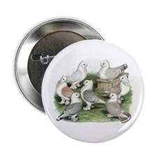 """Classic Frill Pigeons 2.25"""" Button"""