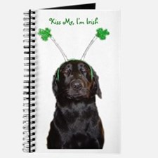 Irish lab Journal
