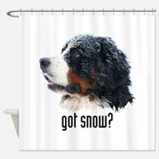 got snow.png Shower Curtain