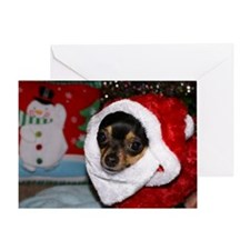Chihuahua Santa Greeting Card
