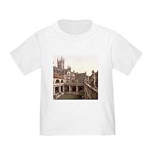 Roman Baths and Abbey T