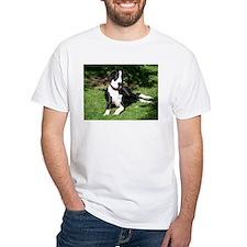 LNS Shirt