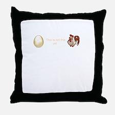 Anti-abortion egg personhood bill Romney Ryan 2012