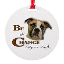 Be the Change Pit.png Ornament