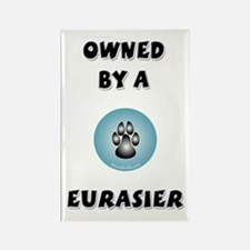 Owned by an Eurasier Rectangle Magnet (10 pack)