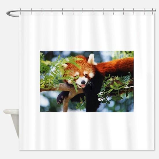 File1071.jpg Shower Curtain