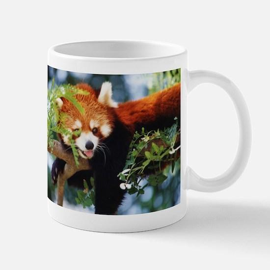 File1071.jpg Mug