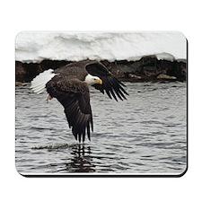 Eagle, Fish in Talons Mousepad