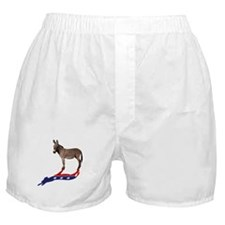 Dem Donkey Shadow Boxer Shorts