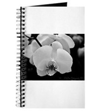 Orchids in Black and White Journal