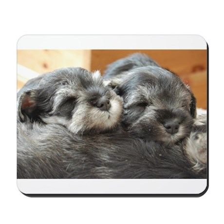 Snoozing Schnauzer Puppies Mousepad