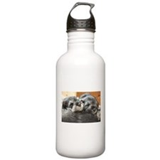 Snoozing Schnauzer Puppies Water Bottle
