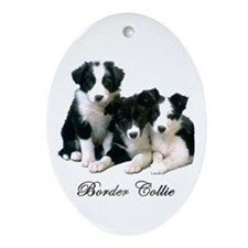 Border Collie Puppies Ornament (Oval)
