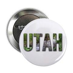 Utah Souveniers 2.25