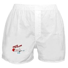 Cute Snakes on a plane Boxer Shorts