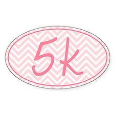 5k Pink Chevron Decal