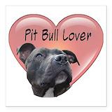 Pit bull Square Car Magnets