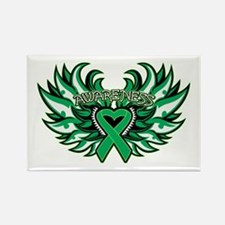 Liver Cancer Heart Wings Rectangle Magnet