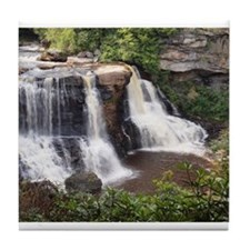 Blackwater Falls Tile Coaster