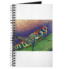 Painted Grasshopper Journal