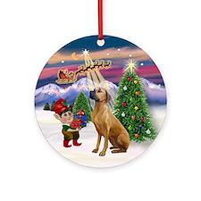 Santa's Take Off & Rhodesian Ornament (Round)