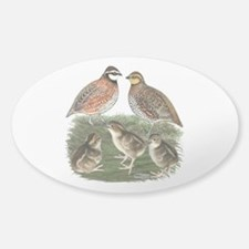 Bobwhite Family Decal