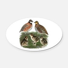 Bobwhite Family Oval Car Magnet