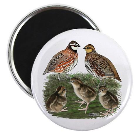 Bobwhite Family Magnet