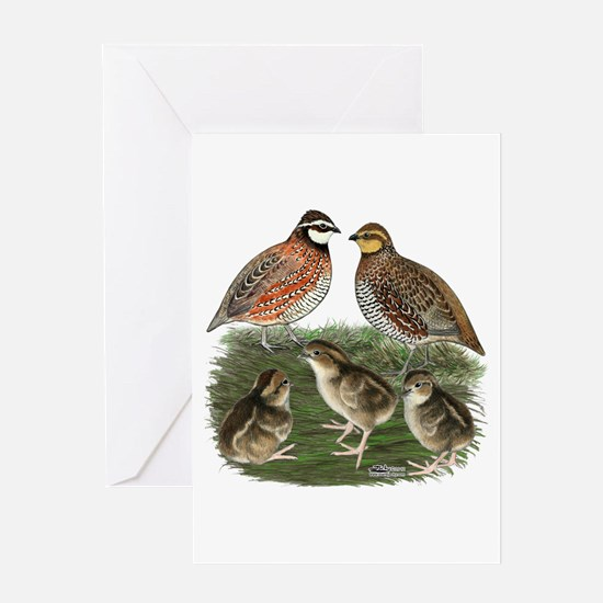 Bobwhite Family Greeting Card