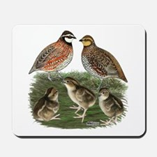 Bobwhite Family Mousepad