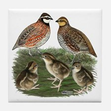 Bobwhite Family Tile Coaster