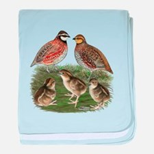 Bobwhite Family baby blanket
