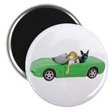Dogs Green Car Magnet