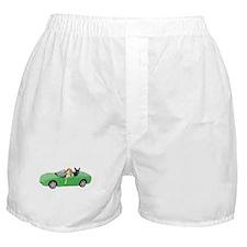 Dogs Green Car Boxer Shorts