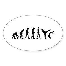 Evolution Capoeira Bumper Stickers