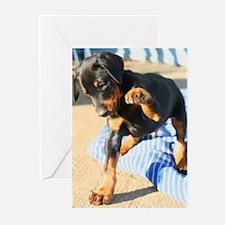 Doberman Greeting Cards (Pk of 10)