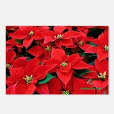 Christmas Poinsettias Postcards (Package of 8)
