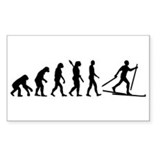 Evolution Cross country skiing Bumper Stickers