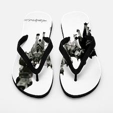 Unique D d Flip Flops
