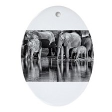 Elephant Reflections Ornament (Oval)