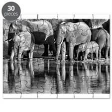 Elephant Reflections Puzzle