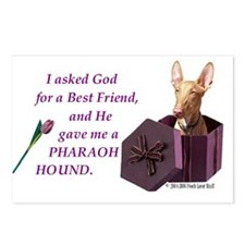 Pharaoh Hound Postcards (Package of 8)