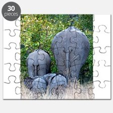 Elephant Roadblock Puzzle
